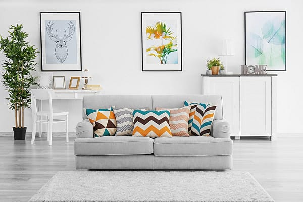 Laminate flooring and rug