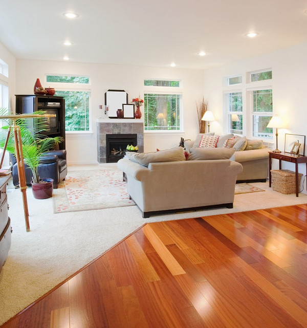 Timber flooring and carpet image