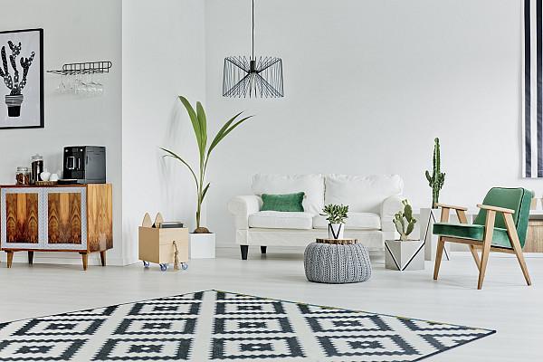 Laminate flooring and rug image