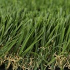 Artificial Grass or Synthetic Turf